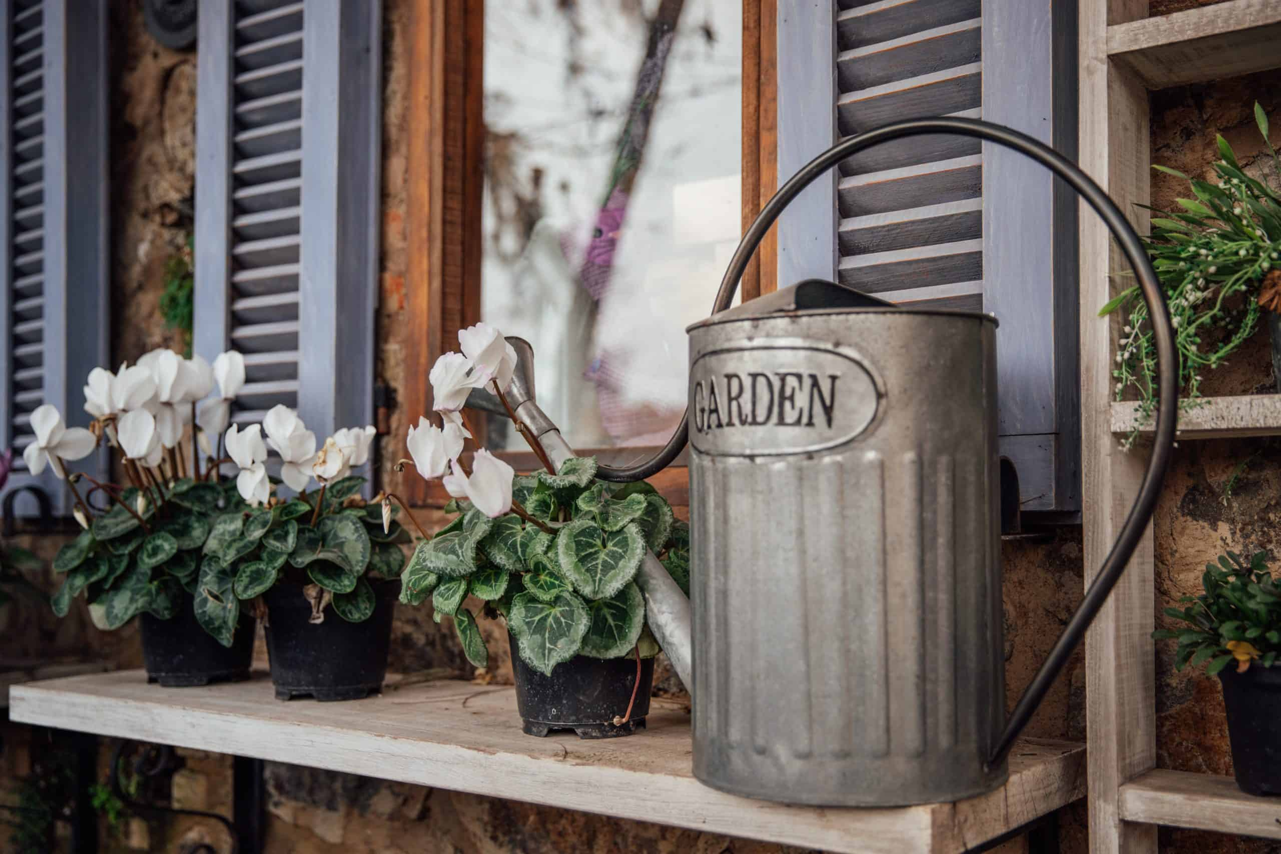 Watering Can Of Indoor Garden Can Also Be A Decorative Item